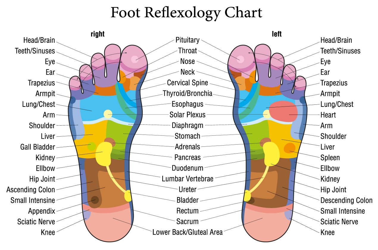 Foot-Reflexology_Chart