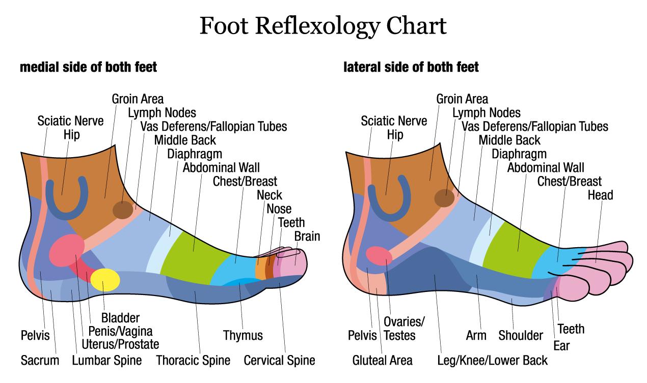 Foot-Reflexology_Chart_2