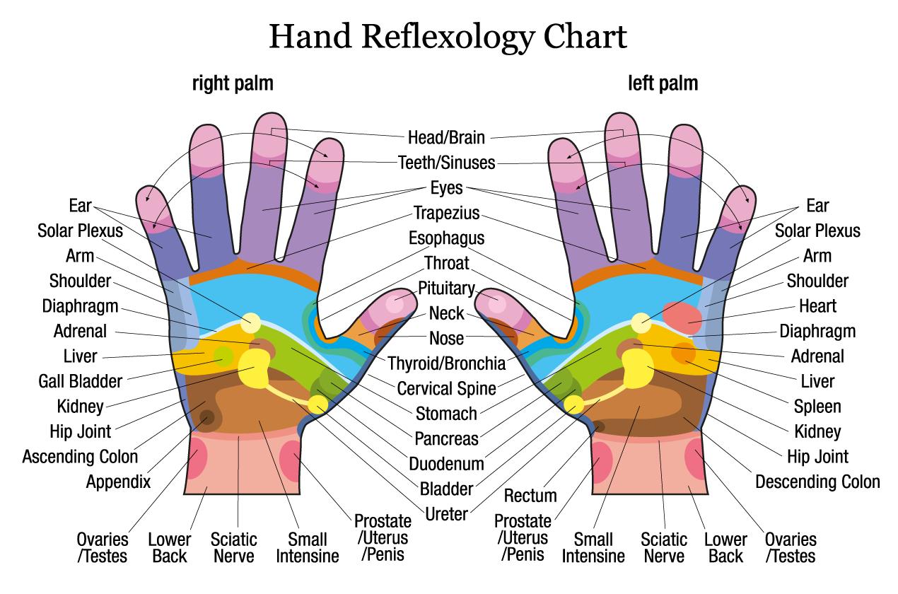 Hand-Reflexology_Chart